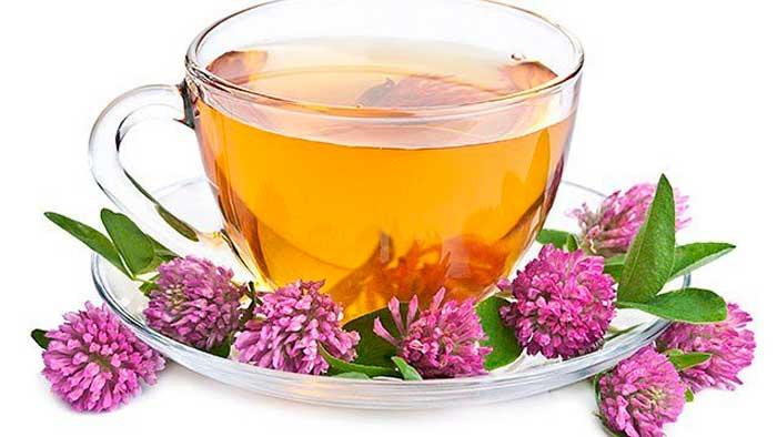 Клеверный чай от мигрени