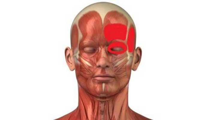 К какому врачу обращаться, если часто болит голова: рекомендации