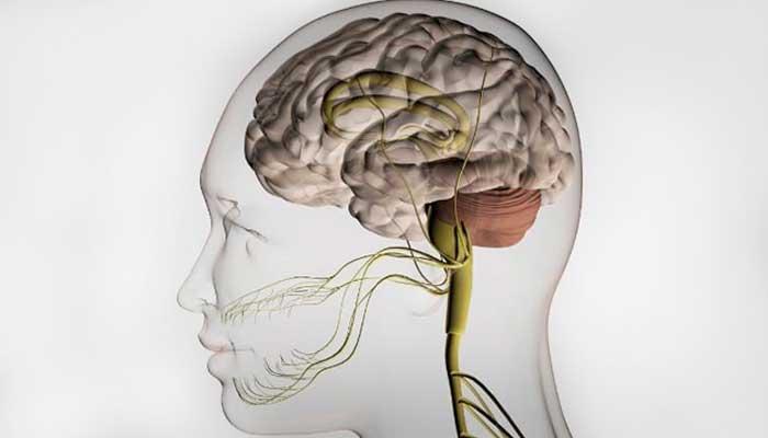 Внутричерепная гипертензия (ВЧГ): симптомы и лечение